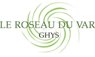 Ghys produced gouged bassoon cane